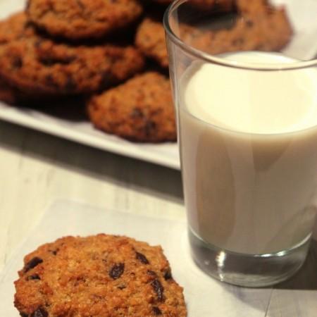 Chocolate Coconut Quinoa Cookies