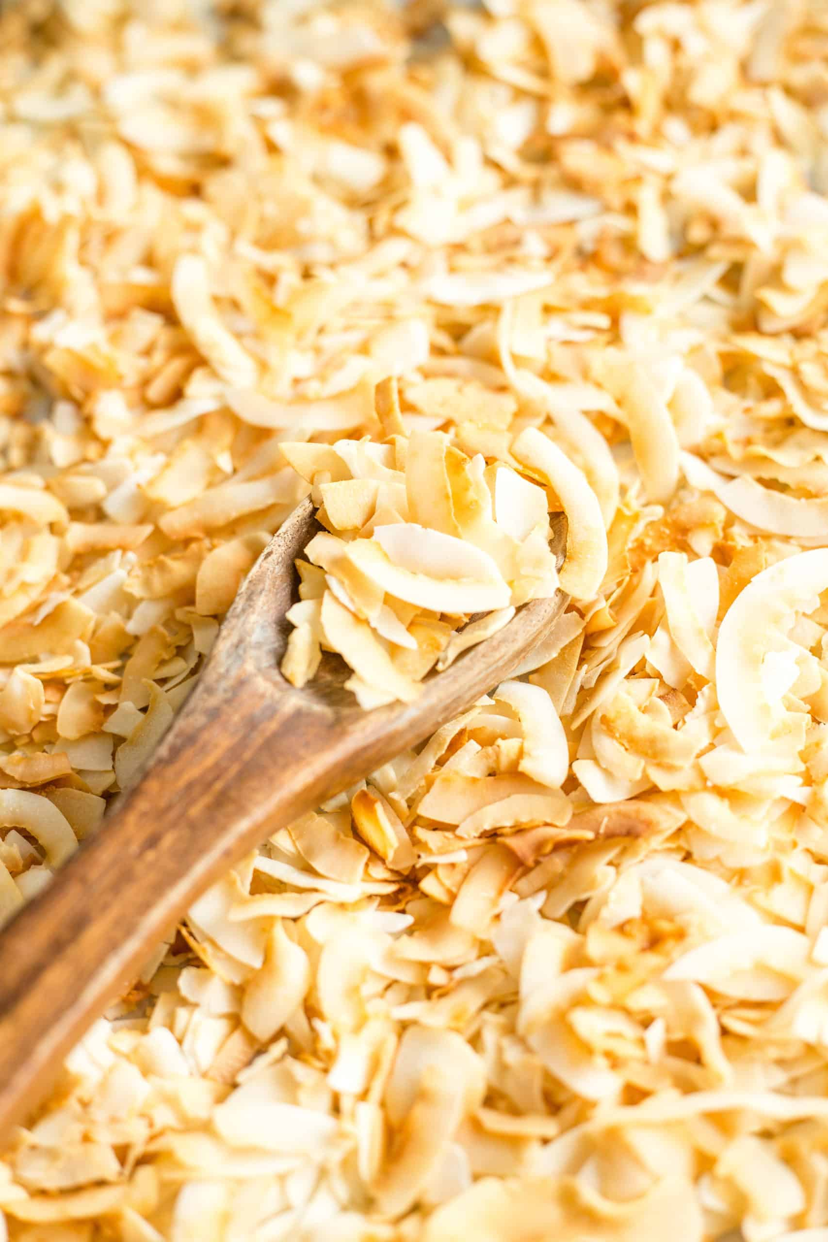 coconut chips on a baking sheet